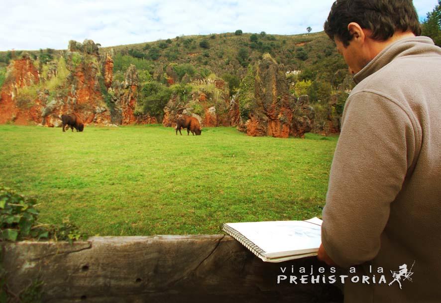 Dibujando en el parque frente a los bisontes de Cabárceno