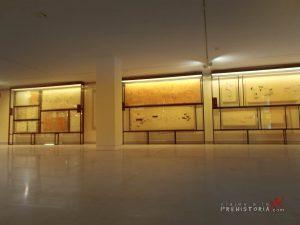 exposición museo altamira